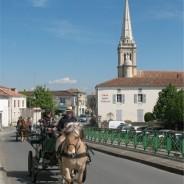 Damvix : Le Marais Sauvage