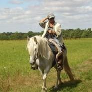 Un cheval Camargue pour vos randos !