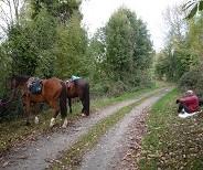 Itinéraire du Bocage :Tallud Ste Gemme – St Aubin des Ormeaux