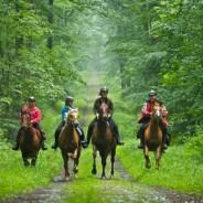 La Vendée se visite aussi à cheval