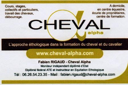 ChevalAlphaimg069