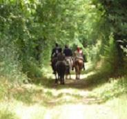 Itinéraire du Bocage : Tallud Ste Gemme – Gralas