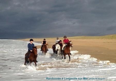 Randonnee  Longeville sur mer