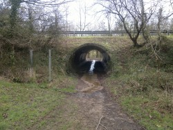 accès sous le boviduc à droite de l'étang