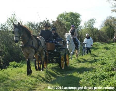 site de rencontre pour passionné de chevaux